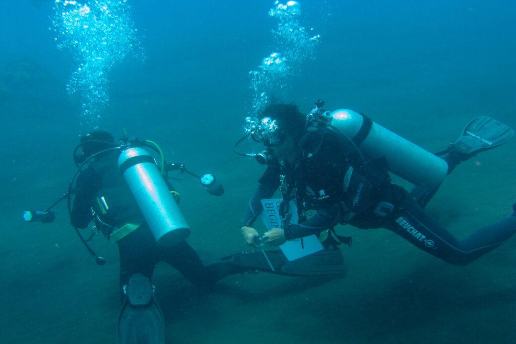 cours de plongée avec Amed Dive Center