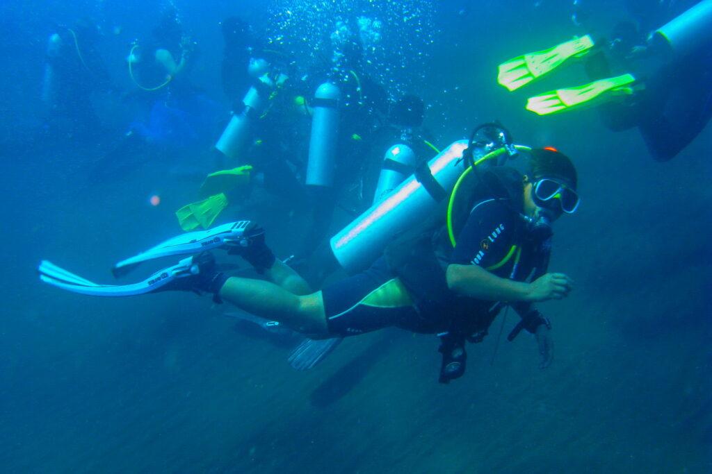 Les plongeurs pendant le cours de plongée