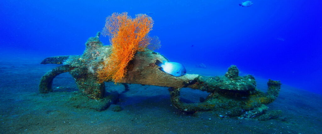 récif artificiel Amed Ghost Bay - Bali