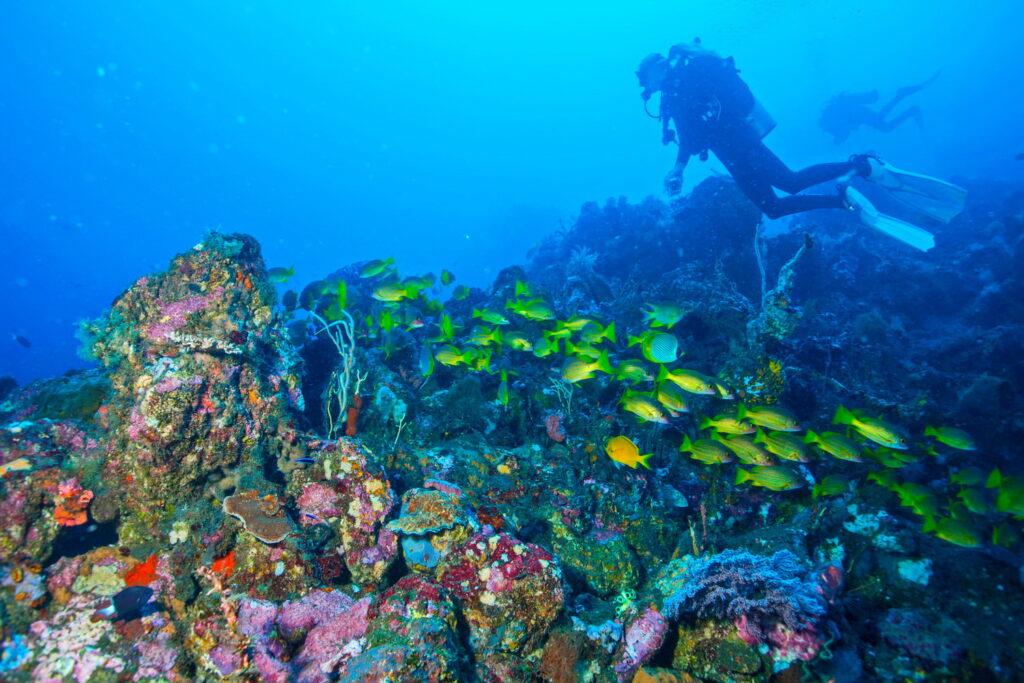 Sites de Plongée & Snorkeling Amed - plongeur sur le site de plongée des pyramides d'Amed