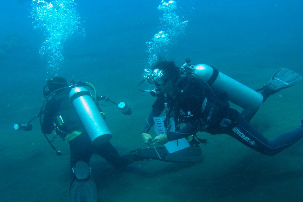 PADI & SSI Tauchkurse mit Amed Dive Center