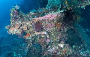 Dive sites Amed Bali