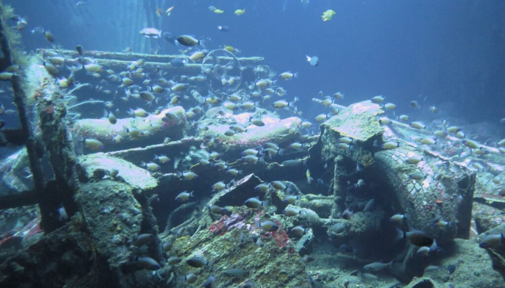 Sites de Plongée & Snorkeling Tulamben - Kubu Naufrage